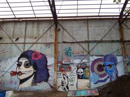 street-art-graff-darwin